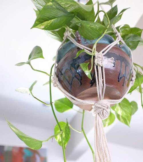 Hanging Garden Using Macrami  - Clay Pot Crafts