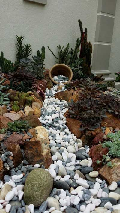 Busy Succulent Dry River Bed - Clay Pot Crafts