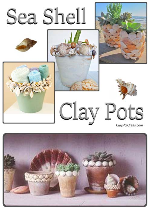 Decorative Sea Shell Flower Pots - Terracotta Pot Projects - Clay Pot Crafts