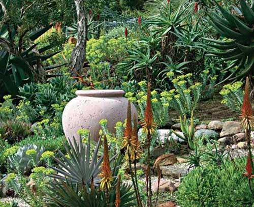Empty Terracotta Pot in the Rockery - Clay Pot Crafts