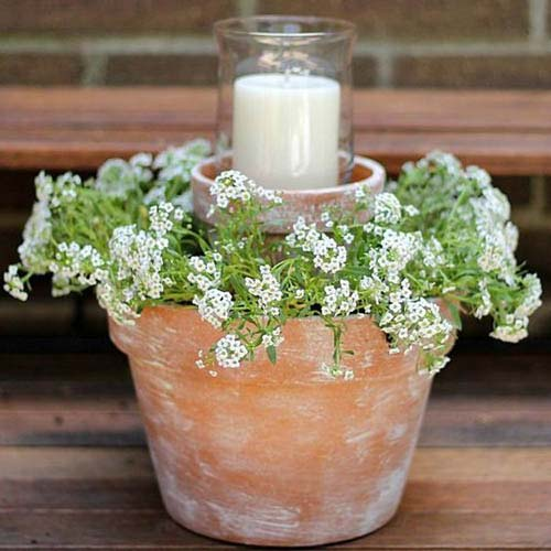 Rustic Clay Pot Candle Holder and flowers