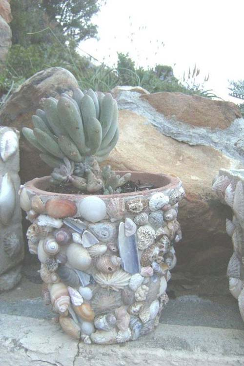 Sea Shell Flower Pots - Decorative Pot Using Sea Shells - Clay Pot Crafts