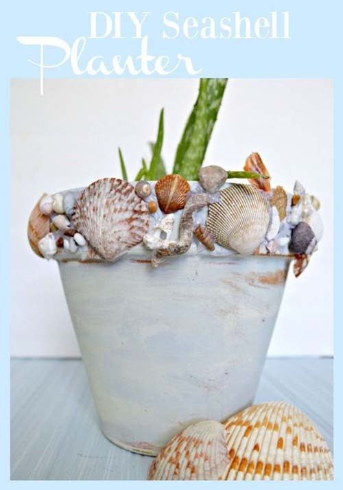 Sea Shell Flower Pots - Rustic Shell Planter - Clay Pot Crafts