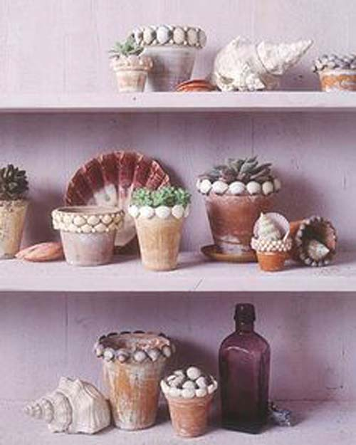 Sea Shell Flower Pots - Sea Shell Pot Projects - Clay Pot Crafts