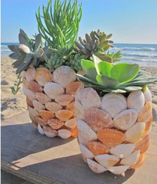 Sea Shell Flower Pots - Sea Shell Succulent Planter - Clay Pot Crafts