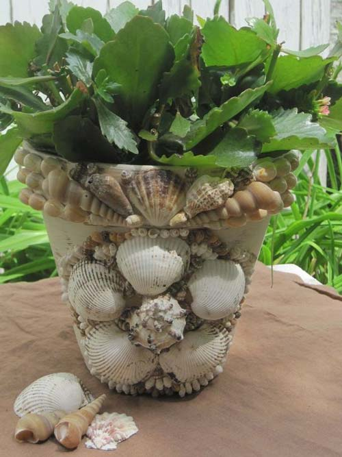 Sea Shell Flower Pots - Shell Encrusted Pot - Clay Pot Crafts