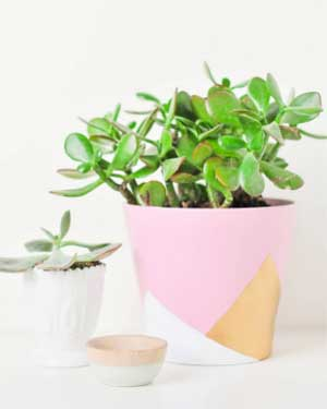 ColorBlocked Geometric Painted Planters - Clay Pot Crafts