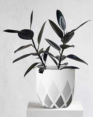 Shades Geometric Painted Planters - Clay Pot Crafts